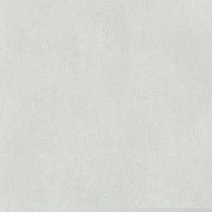 Koud Grijs - Zelfklevend Karton SILHOUETTE