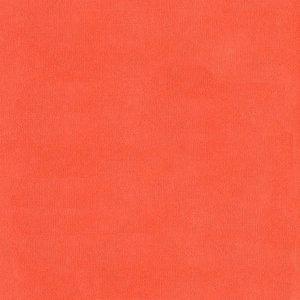 Zalm - Zelfklevend Karton SILHOUETTE