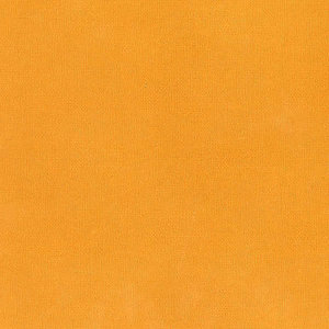 Pompoen - Zelfklevend Karton SILHOUETTE